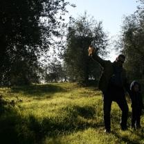 2012 Toscana
