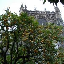 2006 Andalucia